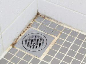 Penészes fal a fürdőszobában